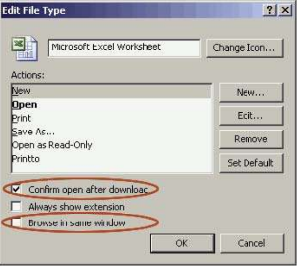 Excel advanced settings menu